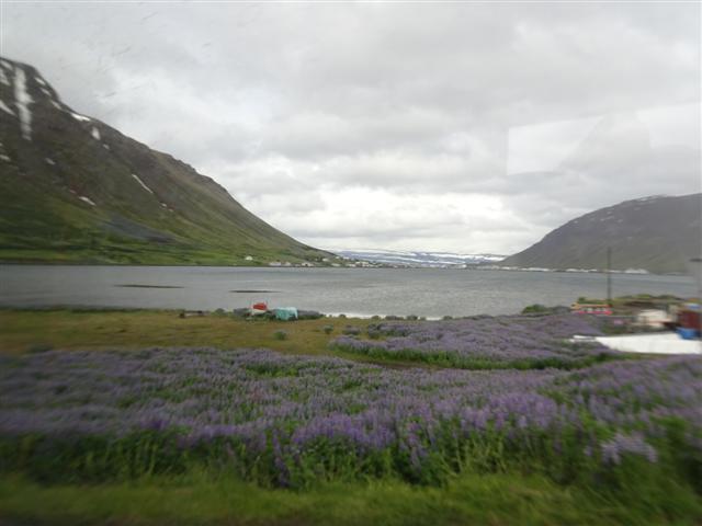 25-6-18Isafjordfiordo.JPG